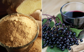 10 Antiviral Herbs That Fight Infections