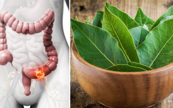 Benefits of Bay Leaf: 5 Uses To Consider