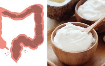 10 Probiotic Yogurt Benefits