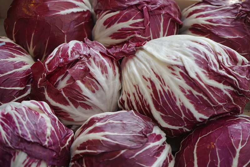 Radicchio Benefits
