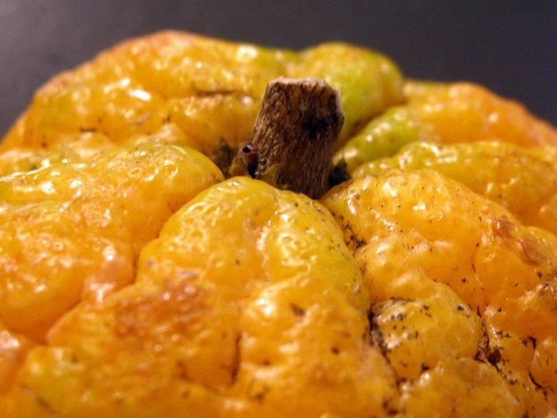 Benefits of ugli fruit