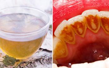 7 White Tea Benefits & Uses