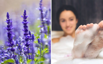 Homemade Bubble Bath With Essential Oils
