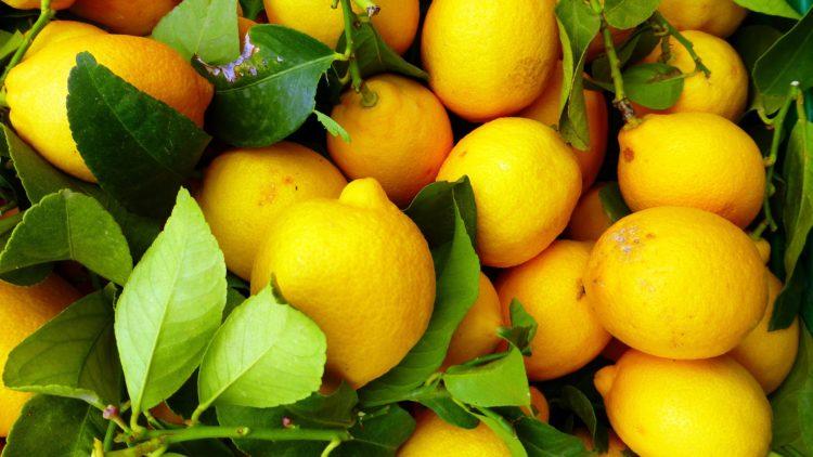 lemons stop migraines